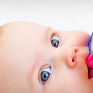 Has Your Toddler Turned Into a Screaming, Drooling Monster?